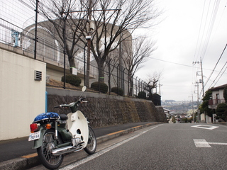 P3010059.JPG